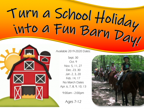 Turn School Holidays into Fun Barn Days!